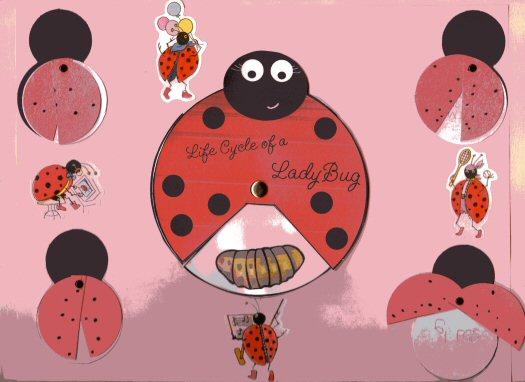 ladybug3.jpg